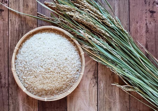 米粉コッペパン